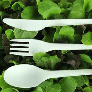 Couverts jetables bois et plastique biodégradable - PKG Food